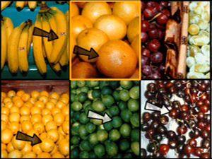 Учим английский язык - тема Еда-Продукты, видео уроки английский язык, английский для детей, английский бесплатно, английский для начинающих, русско-английский словарь тема еда продукты