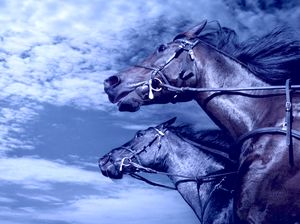 символ 2014 года - Синяя Деревянная Лошадь